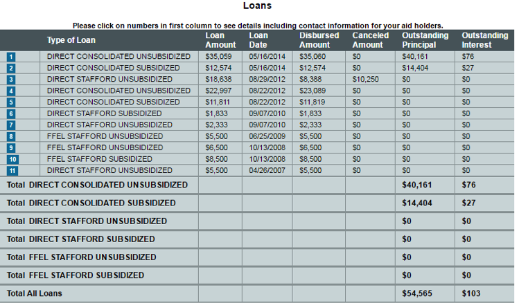 Screenshot of the National Student Loan Database System