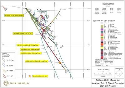 Figure 3:  Section for hole NT21-181 showing significant mineralized intersections. (CNW Group/Trillium Gold Mines Inc.)
