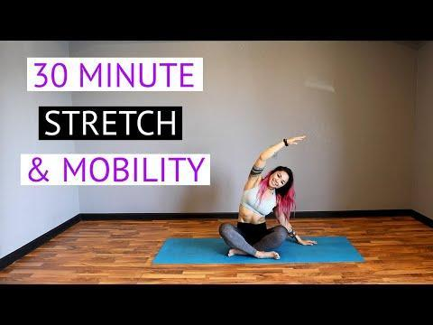 """<p>Not every workout has to push you to your limits. If your body's craving a rest day or a little extra stretching, give this mobility workout a go. The easy movements will help with lingering stiffness and leave you feeling calm and centered.</p><p><a href=""""https://www.youtube.com/watch?v=QIc_rQ7MgyI"""" rel=""""nofollow noopener"""" target=""""_blank"""" data-ylk=""""slk:See the original post on Youtube"""" class=""""link rapid-noclick-resp"""">See the original post on Youtube</a></p>"""