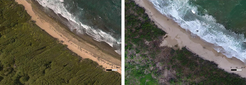In this photo combo provided by Eric Lo, shows the shoreline in Manati, on Aug. 2017, left, before hurricane Maria and on Nov. 2017, after the Hurricane Maria, in Puerto Rico. A group of U.S.-based scientists are rushing to document indigenous sites along Puerto Rico's coastline that date back a couple thousand years before rising sea levels linked to climate change destroy a large chunk of the island's history they say is still being discovered. (Eric Lo via AP)