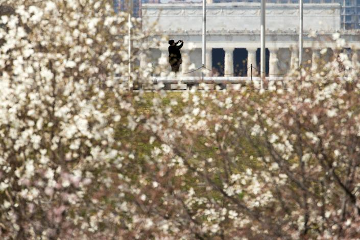 Cherry Blossoms and other trees begin to bloom as the Lincoln Memorial is visible behind a woman who takes photographs from the base of the Washington Monument on the National Mall, Tuesday, March 17, 2020, in Washington.