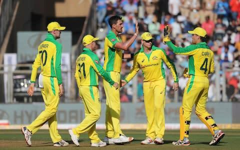 <span>Mitchell Starc set Australia on their way with a fine performance with the ball</span> <span>Credit: AP </span>
