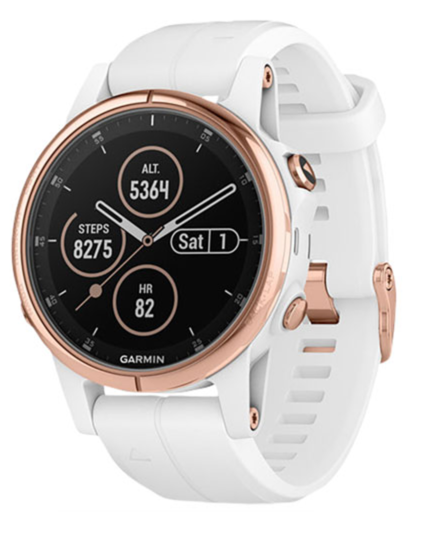 Garmin Fenix 5S Plus Sapphire Smartwatch (Photo via Best Buy Canada)