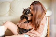 "<p>So, you're looking to bring home a new furry friend, but your living space is too small for any large pets to run freely. Maybe adopting a small <a href=""https://www.womansday.com/life/pet-care/g27238913/best-cat-litters/"" rel=""nofollow noopener"" target=""_blank"" data-ylk=""slk:cat"" class=""link rapid-noclick-resp"">cat</a> breed instead of a <a href=""https://www.womansday.com/life/pet-care/g27530686/large-cat-breeds/"" rel=""nofollow noopener"" target=""_blank"" data-ylk=""slk:larger one"" class=""link rapid-noclick-resp"">larger one</a> is the best option for you. Weighing no more than 10 pounds, small cats can bring excitement to you and your family without needing too much space. <br><br>Some of these small <a href=""https://www.womansday.com/life/pet-care/g26591338/cat-quotes/"" rel=""nofollow noopener"" target=""_blank"" data-ylk=""slk:cat"" class=""link rapid-noclick-resp"">cat</a> breeds are pretty independent and like to spend time on their own, while others will be your new, favorite cuddle buddy. But, don't be fooled by their size. These cats are very fast and strong, so you might rethink any stereotypes about small size. Good luck leaving your cat alone, though, these small cat breeds are so cute you'll want to scoop them up in endless cuddles. Fingers crossed you find a kitty that will indulge you in all the snuggles. <br></p>"