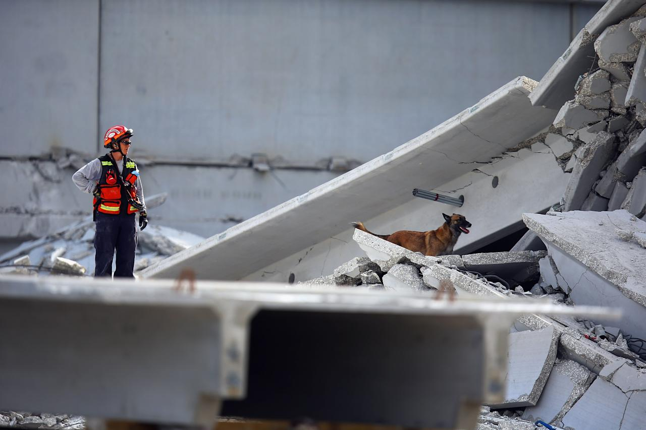 DORAL, FL - OCTOBER 10:  A Miami-Dade Fire Rescue search and rescue worker searches in the rubble for survivors of a four-story parking garage that was under construction and collapsed at the Miami Dade College's West Campus on October 10, 2012 in Doral, Florida.  Early reports indicate that one person was killed, at least seven people injured and one is still trapped.  (Photo by Joe Raedle/Getty Images)