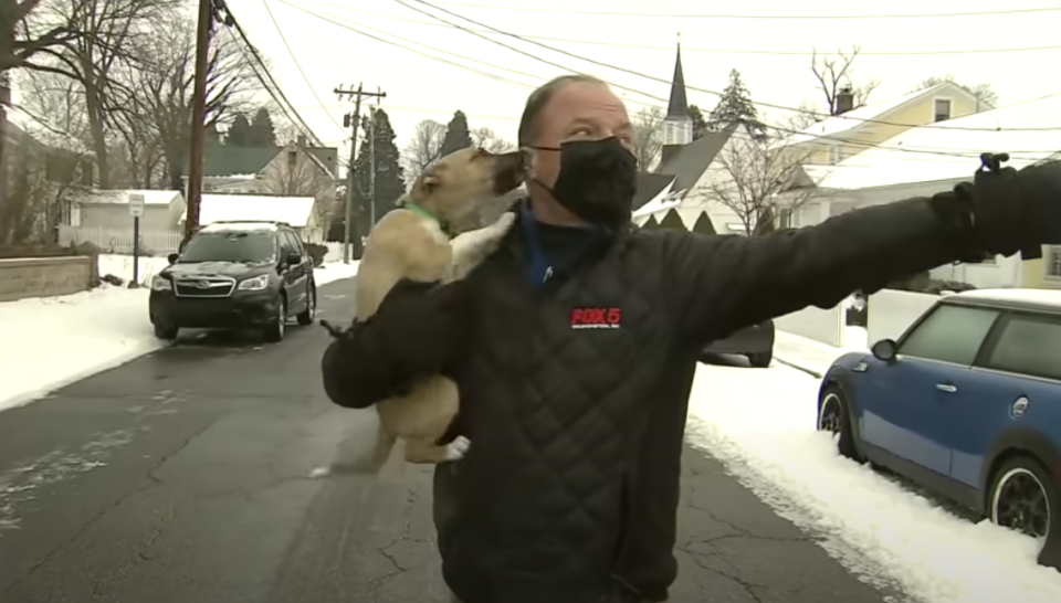 Bob Barnard, a reporter with Fox 5, has his face licked by a puppy during a live cross.