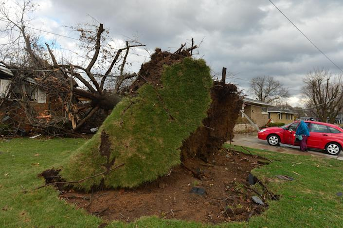 A tree was pulled out of the ground by the roots, collapsing onto a house after a tornado left a path of devastation through the north end of Pekin, Il.,Sunday, Nov. 17, 2013. Intense thunderstorms and tornadoes swept across the Midwest on Sunday, causing extensive damage in several central Illinois communities while sending people to their basements for shelter. (AP Photo/Journal Star, Fred Zwicky) MANDATORY CREDIT