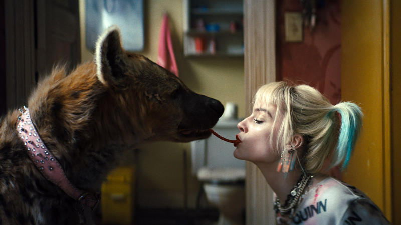 Harley Quinn and her pet hyena in 'Birds of Prey'. (Credit: Warner Bros/DC)