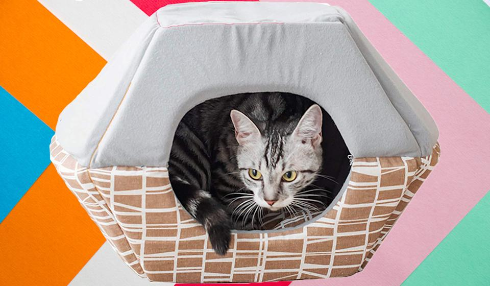 Pounce on this cat bed—it's 50 percent off. (Photo: Amazon)