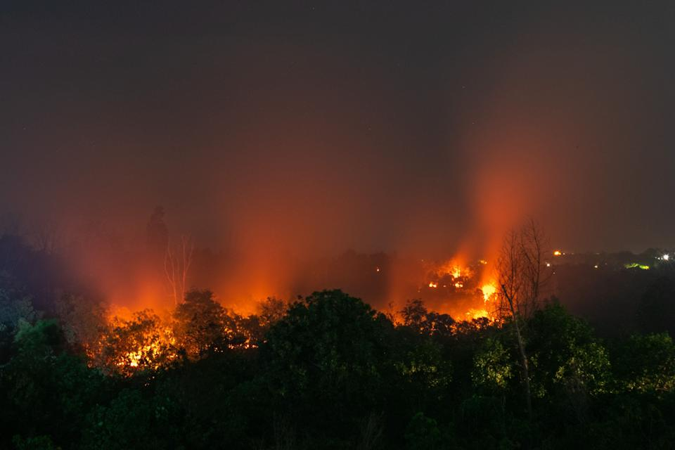 A forest fire in Riau Province, Indonesia, on March 1, 2020. These fires have been a mostly human-made problem for decades as much of it arises from the clearing of forests for more palm oil plantations. (Photo: Afrianto Silalahi/NurPhoto via Getty Images)