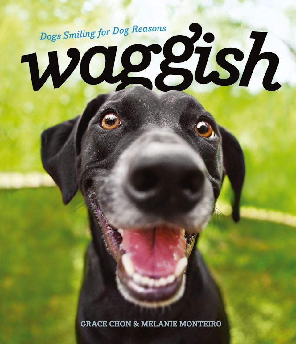 """<p>$11</p><p><a rel=""""nofollow noopener"""" href=""""https://www.amazon.com/Waggish-Dogs-Smiling-Dog-Reasons/dp/1682680983"""" target=""""_blank"""" data-ylk=""""slk:BUY NOW"""" class=""""link rapid-noclick-resp"""">BUY NOW</a></p><p>Buy Grace Chon and Melanie Monteiro's new book <em>Waggish</em> on <a rel=""""nofollow noopener"""" href=""""https://www.amazon.com/Waggish-Dogs-Smiling-Dog-Reasons/dp/1682680983"""" target=""""_blank"""" data-ylk=""""slk:Amazon.com"""" class=""""link rapid-noclick-resp"""">Amazon.com</a> or wherever books are sold. </p>"""