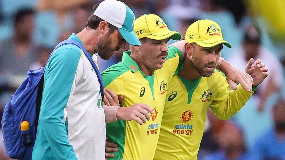 Pictured here, David Warner is helped from the field after picking up a groin injury playing for Australia.