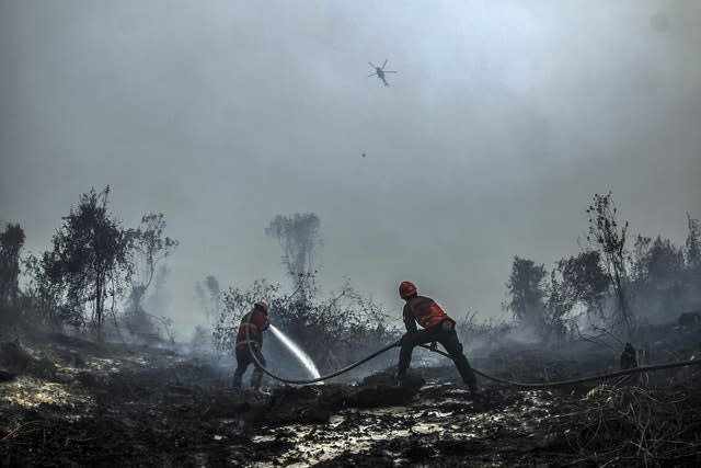 Firefighters in Riau province