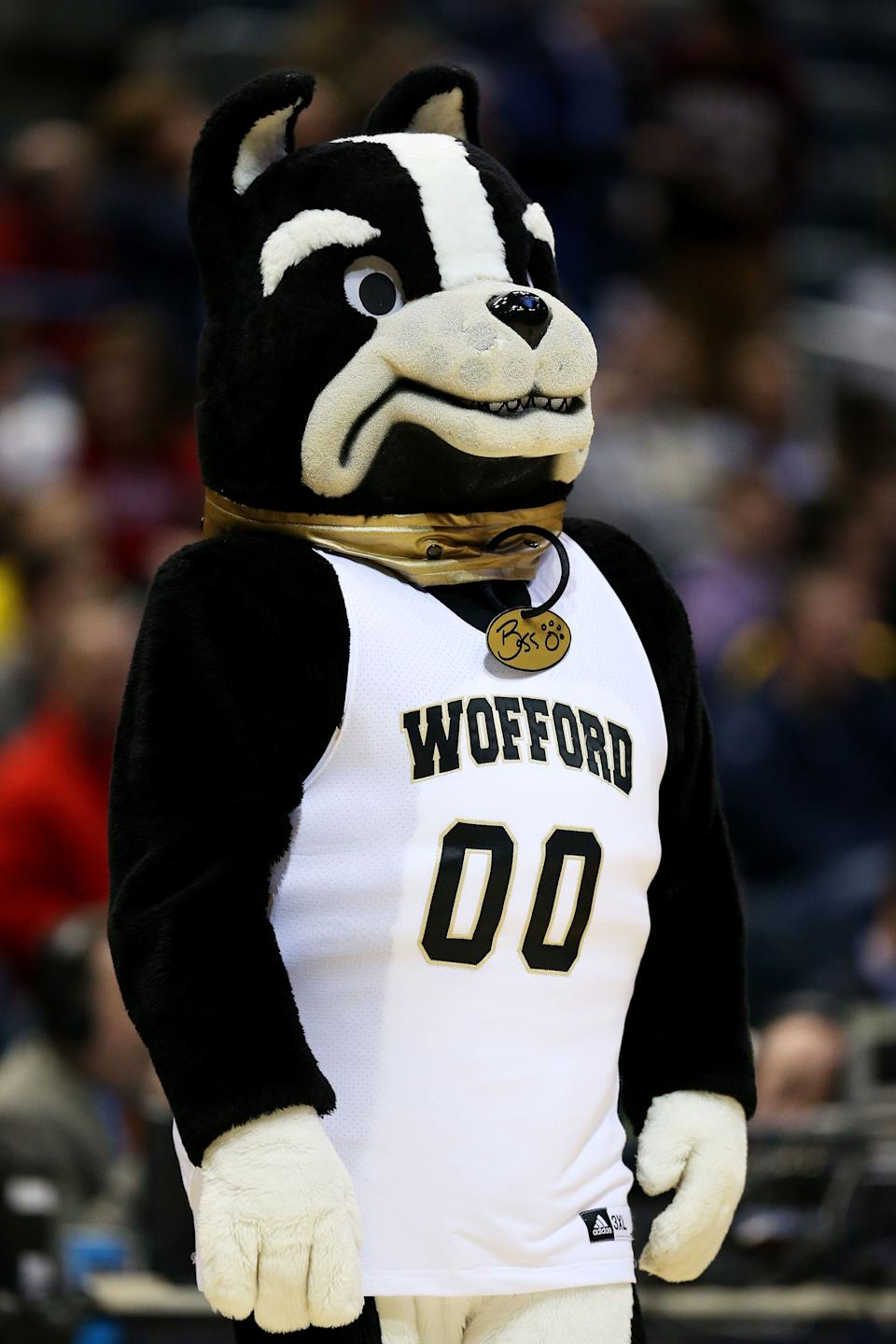 MILWAUKEE, WI - MARCH 20:  The Wofford Terriers mascot looks on against the Michigan Wolverines during the second round of the 2014 NCAA Men's Basketball Tournament at BMO Harris Bradley Center on March 20, 2014 in Milwaukee, Wisconsin.  (Photo by Jonathan Daniel/Getty Images)