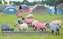 """July 14-17, 2016 Latitude Festival takes place in the English countryside each year, and while children of all ages are allowed admittance, certain areas remain off-limits due to nudity, swearing, and """"unpredictable performances."""" Colorful sheep have been known to roam the fields, where musical, cabaret, and comedic acts—as well as theatrical and literary performances—occur. Skip the high prices and A-list worshipping crowd at Glastonbury, and head to this quirky festival instead. 2016's lineup will be announced soon, so be sure to check back for updates."""