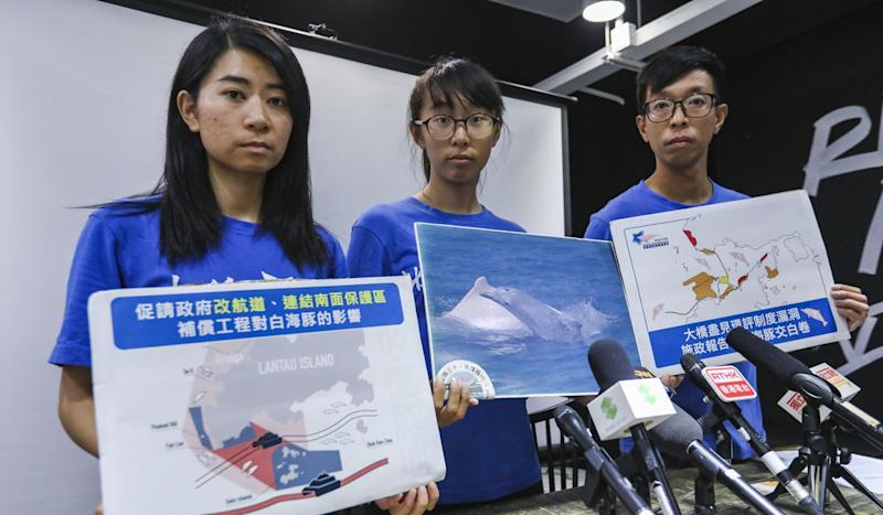 Officials in Hong Kong and mainland China disagree over fate of white dolphins in Pearl River