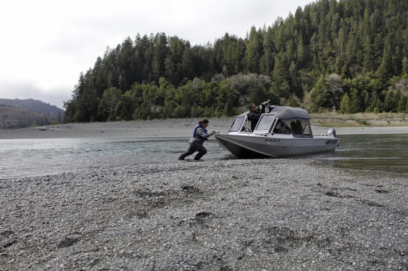 FILE - In this March 5, 2020, file photo, Hunter Maltz, a fish technician for the Yurok tribe, pushes a jet boat into the Klamath River at the confluence of the Klamath River and Blue Creek as Keith Parker, a Yurok tribal fisheries biologist, watches near Klamath, Calif., in Humboldt County. Humboldt County was among the first in the state to get the governor's green light to open up restaurants and stores after a two-month statewide lockdown. (AP Photo/Gillian Flaccus, File)