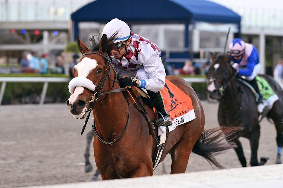 Tiz the Law is the morning line favorite in the Belmont Stakes.