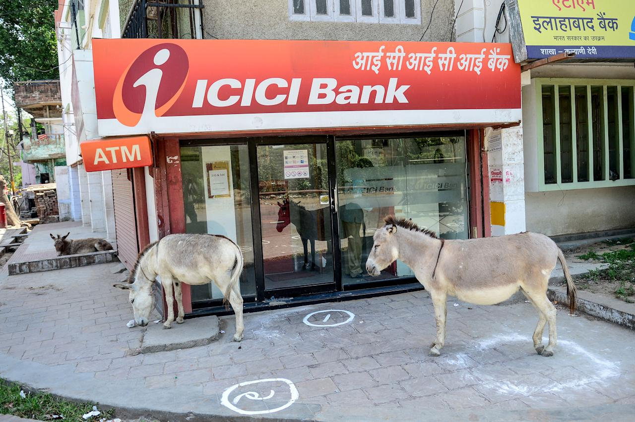 Donkeys stand outside an ATM booth during a government-imposed nationwide lockdown as a preventive measure against the COVID-19 in Allahabad. (Photo by SANJAY KANOJIA/AFP via Getty Images)