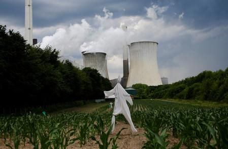 FILE PHOTO: A scarecrow stands in a corn field in front of the Neurath coal power plant of German utility RWE in Neurath, west of Cologne