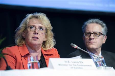 Sweden's Environment Minister Ek and Stocker, a member of an UN IPCC, attend an IPCC meeting in Stockholm