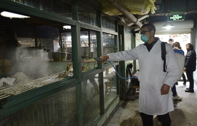 In this Friday, Jan. 24, 2014 photo, a worker disinfects cages at a closed poultry store in Hangzhou in east China's Zhejiang province. Authorities in eastern China said Tuesday, Jan. 28, 2014, they will ban live poultry sales after an increase in the number of people infected with the H7N9 strain of bird flu, with the busy Chinese New Year travel period already under way. So far this year, H7N9 has killed 19 people in China and infected 96, Feng Zijian, the deputy director of the Chinese Center for Disease Control and Prevention said Monday, according to state media. (AP Photo) CHINA OUT