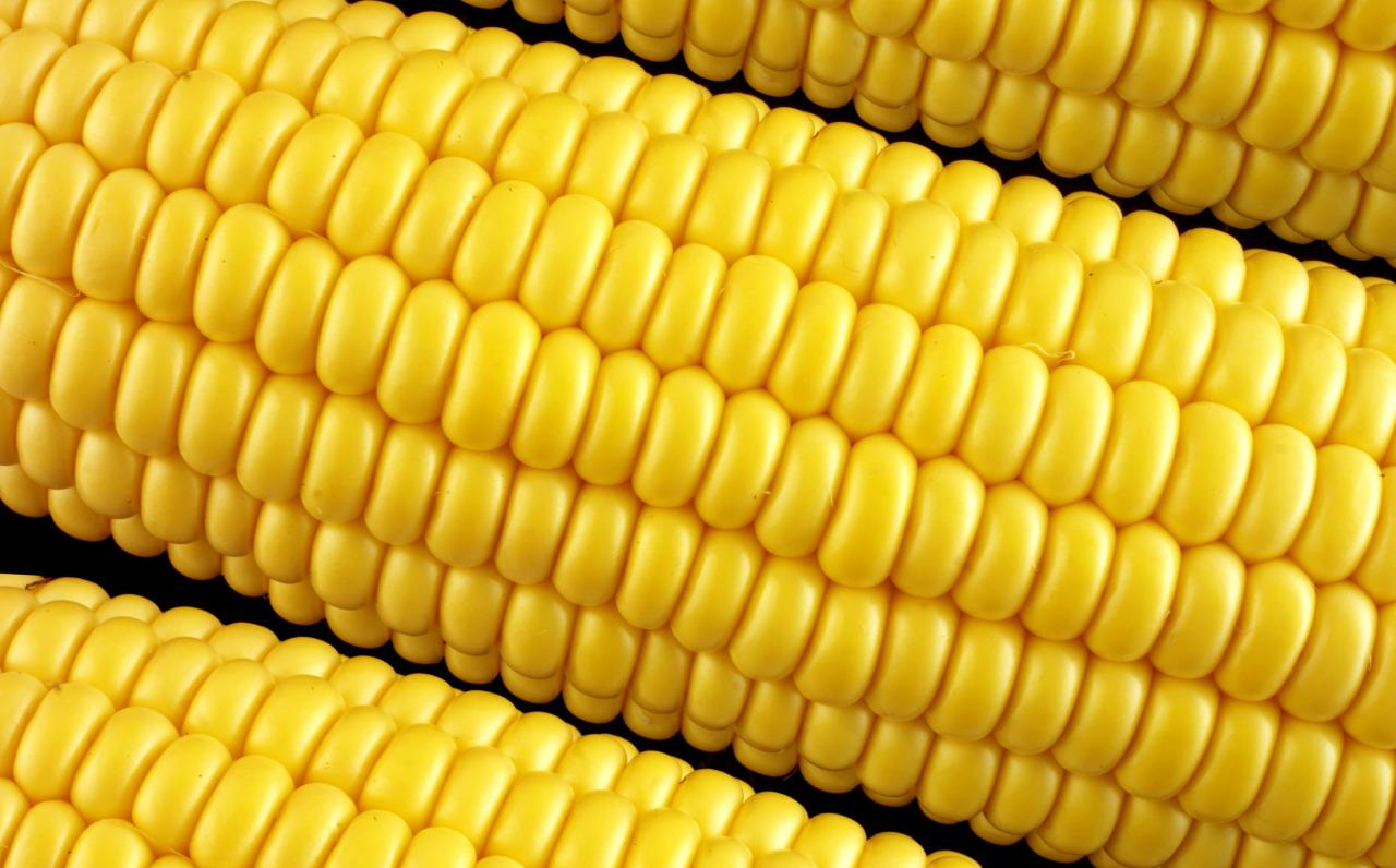 <p>Corn kernels are basically little sponges for pesticides. In fact, some of them even produce their own pesticides within the actual plant. They are also of dubious nutritional value. [Rex]</p>