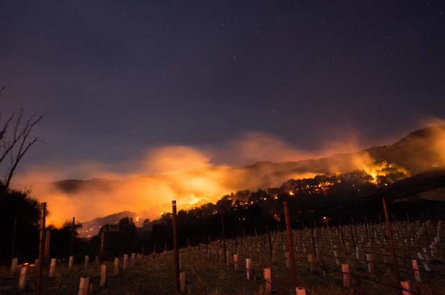 <p>Fire glows on a hillside in Napa, Calif., on Oct. 9, 2017, as multiple wind-driven fires continue to whip through the region. (Photo: Josh Edelson/AFP/Getty Images) </p>