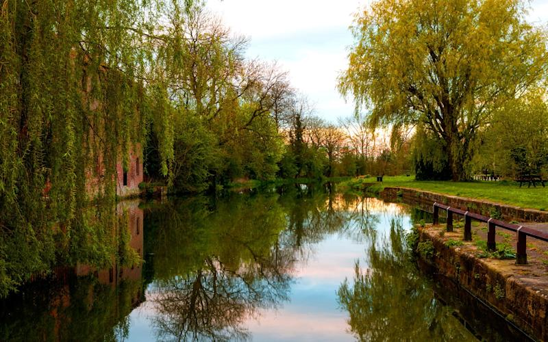 In July the Pocklington Canal will celebrate its bicentenary - This content is subject to copyright.