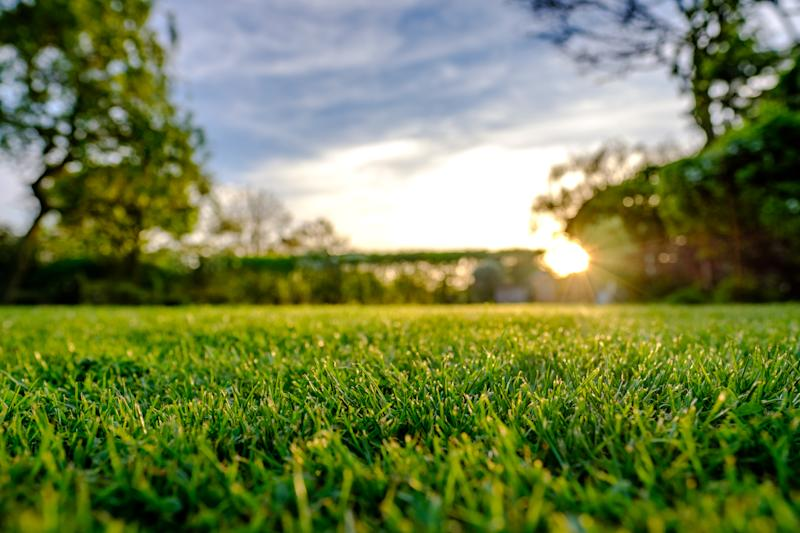 Give your lawn some TLC and it'll reward you come spring. (Photo: Getty Images)
