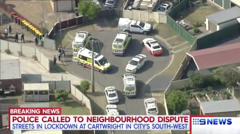 At least one dead after stabbing in Sydney's south-west