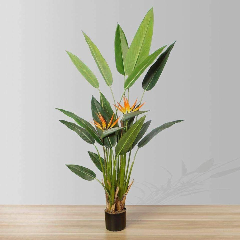 """<p>artiplanto.com</p><p><strong>$166.00</strong></p><p><a href=""""https://www.artiplanto.com/collections/artificial-plants-canada-us-only/products/luza-bird-of-paradise-5-artificial-plant-artiplanto"""" rel=""""nofollow noopener"""" target=""""_blank"""" data-ylk=""""slk:Shop Now"""" class=""""link rapid-noclick-resp"""">Shop Now</a></p><p>Amp up your tropical vibes inside with this life-like bird of paradise that has flowers that grow all year round. Sure, it has that """"too-perfect"""" look, but so does the real thing. </p>"""
