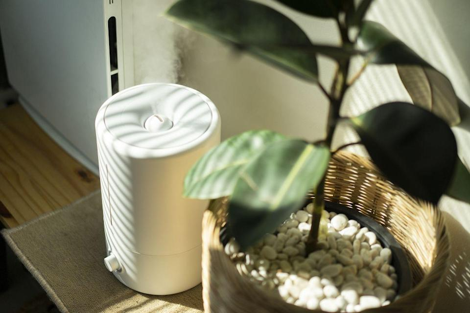 """<p>""""Air pollution can significantly impact your health, and the indoor air is usually dirtier than the outdoor air,"""" Jen Stark, founder of <a href=""""https://happydiyhome.com/"""" rel=""""nofollow noopener"""" target=""""_blank"""" data-ylk=""""slk:Happy DIY Home"""" class=""""link rapid-noclick-resp"""">Happy DIY Home</a>, tells Woman's Day. By adding air purifiers, which use internal fans to pull air through filters that can remove harmful particles like bacteria and dust, you """"clear up the air to make it easier and healthier for you to breathe."""" Add one in each room, or at least a room that gets a lot of foot traffic, like the living room or kitchen. </p><p><strong>BUY IT NOW:</strong> <a href=""""https://www.amazon.com/JINPUS-Purifier-Upgraded-Portable-Purifiers/dp/B07RLBT38P/ref=sr_1_3?dchild=1&keywords=air+purifier&qid=1600100197&refinements=p_72%3A2661618011&rnid=2661617011&sr=8-3"""" rel=""""nofollow noopener"""" target=""""_blank"""" data-ylk=""""slk:JINPUS Air Purifier"""" class=""""link rapid-noclick-resp"""">JINPUS Air Purifier</a> ($43)</p>"""