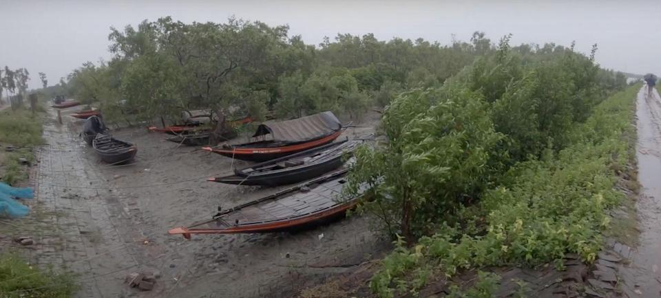 The Sundarbans is our first and greatest wall of defence against nature's fury, Ashwika said.