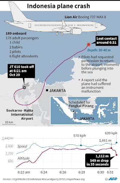 Graphic on Lion Air JT 610 that crashed shortly after take-off with 189 people on board (AFP Photo/John SAEKI)
