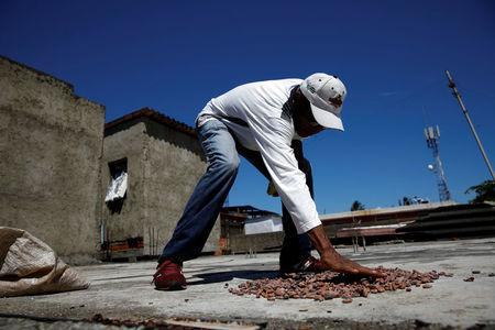 Yoffre Echarri extends cocoa beans to dry them at the roof of his house in Caruao, Venezuela October 24, 2017. REUTERS/Carlos Garcia Rawlins