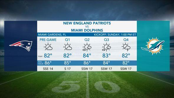 pats dolphins