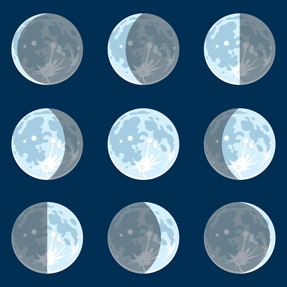 Vecter illustration of the moon phases