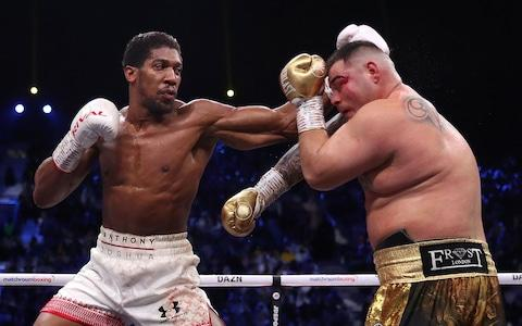 Joshua was able to keep Ruiz at distance with his jab - Credit: Nick Potts/PA Wire