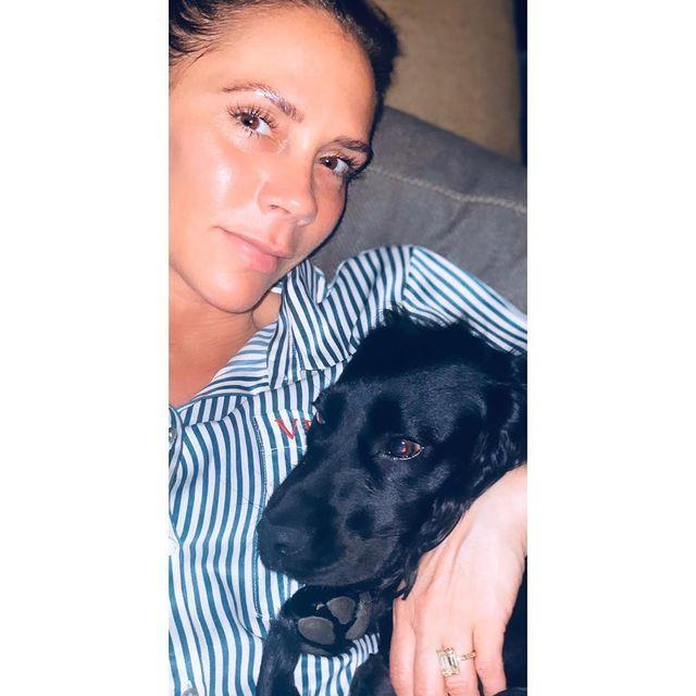 """<p>The former Spice Girl shared how even the Beckham pet dog Fig is feeling a little 'unsettled' with all the change brought about by the pandemic.</p><p><a href=""""https://www.instagram.com/p/B-IJbMQJYQS/"""" rel=""""nofollow noopener"""" target=""""_blank"""" data-ylk=""""slk:See the original post on Instagram"""" class=""""link rapid-noclick-resp"""">See the original post on Instagram</a></p>"""