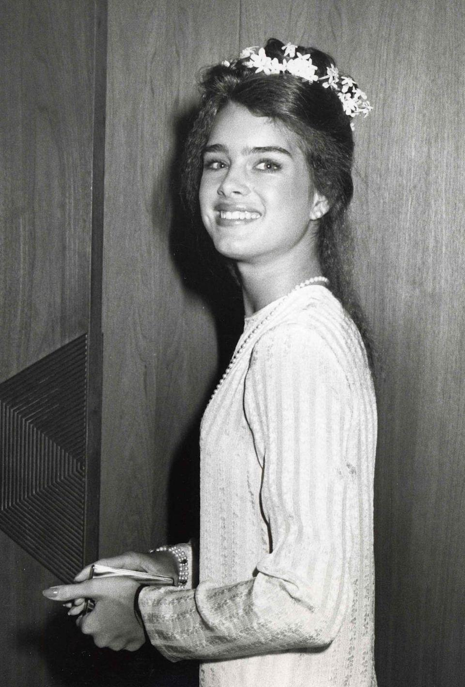 <p>Brooke Shields in a flowing gown accessorised with a flower crown.</p>