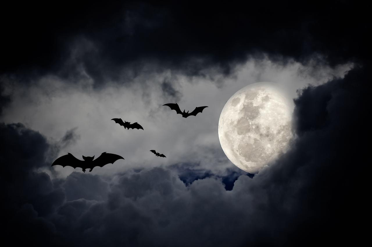 <p>The spookiest time of the year is quickly approaching: Halloween will be here soon. The very best way to get into the Halloween spirit is with these chilling, creepy, and downright scary quotes. In honor of the upcoming holiday, take a look at our favorite words on Halloween below: </p>