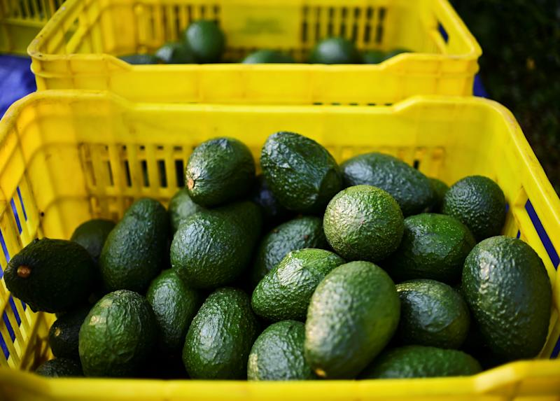 Avocado prices are the highest for July in at least a decade, but the reasons might not be what you suspect. It's not tariffs or potential tariffs.