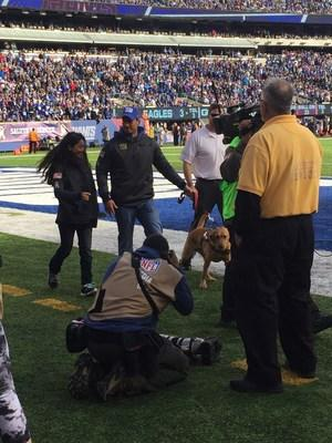 One of America's brave veterans was surprised during the Giants game today with a lifesaving PTS service dog thanks to American Humane, the New York Giants, Semper K9 Assistance Dogs and the United War Veterans Council. Thank you for your service!
