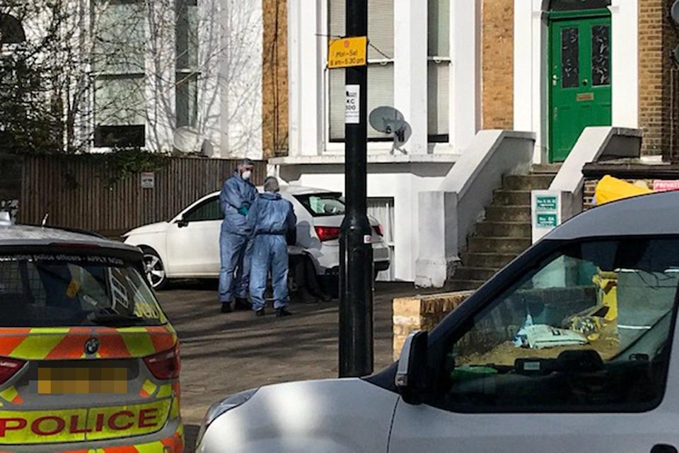 <p>Forensic officers at the scene of an alleged murder in Ealing</p> (John Dunne/Evening Standard)