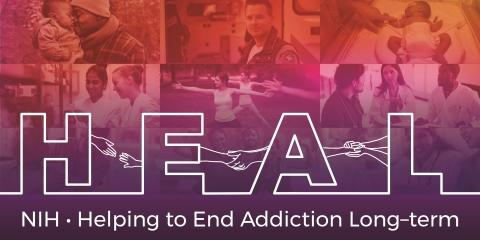 Delpor to Tackle Opioid Use Disorder with $5.7 Million NIH HEAL Grant Award for the Development of a Once-Yearly Naltrexone Therapy to Prevent Relapses