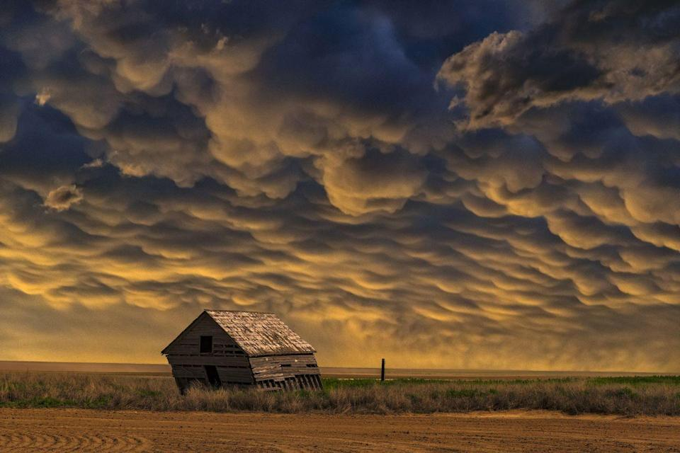 <p>The stormy skies in the middle of a field in Oklahoma create a striking effect. </p>