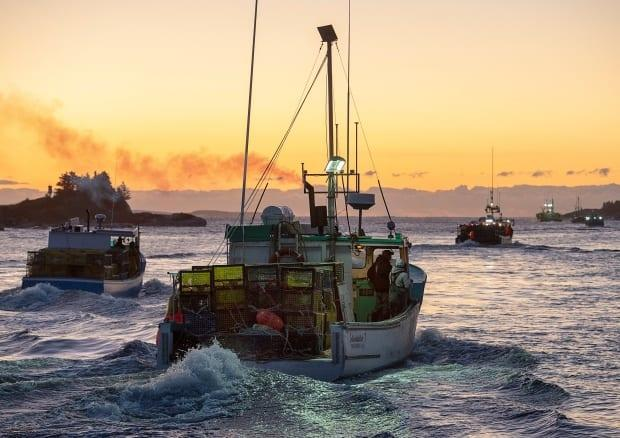 Fishing boats loaded with traps head from port in West Dover, N.S., on Tuesday, Nov. 26, 2019, at the start of lobster season on the South Shore.