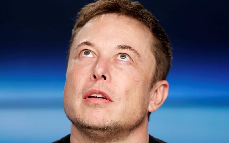 Billionaire SpaceX founder and Tesla CEO Elon Musk is a supporter of the universal basic income - REUTERS