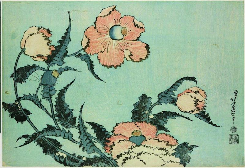 'Poppies from Large Flowers', colour woodblock, 1831-1832 (The trustees of the British Museum )
